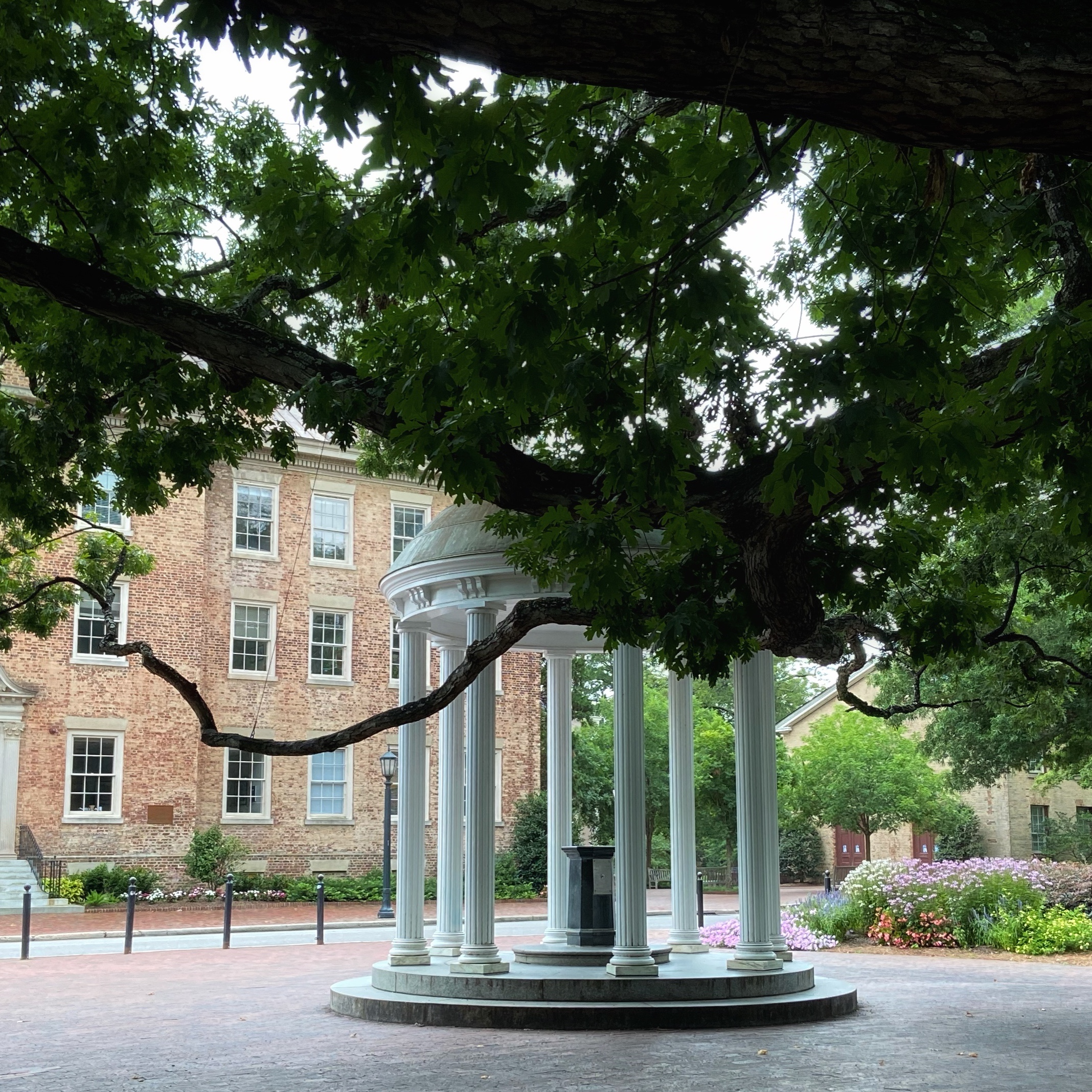 UNC will co-host the National Heritage Language Research Institute this June...
